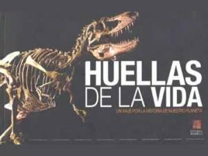 2_huellas_vida