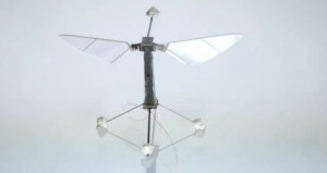 robobee-660x350