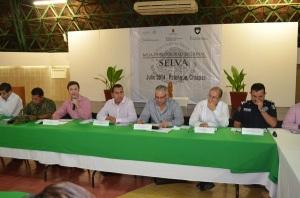 mesa de seguridad Palenque_23 JUL 2014 (6)